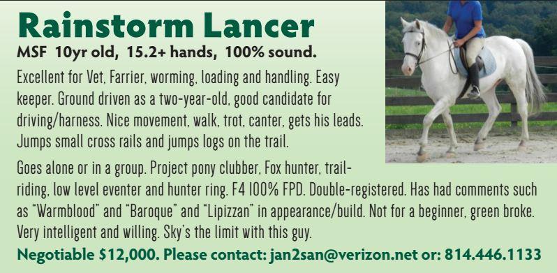 rain-storm-lancer2